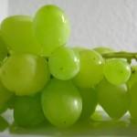 Los flavonoides de la uva protegen de los rayos solares